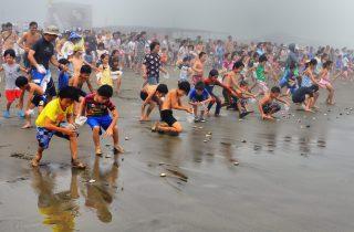 海開き・南九十九里はまぐり祭り